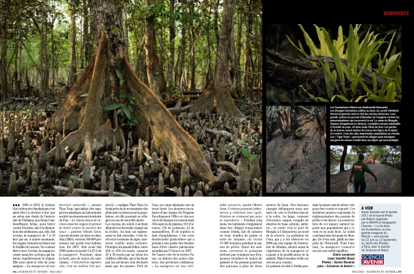 2012_04_SciencesAvenir-Juin12-Mangroves-3net