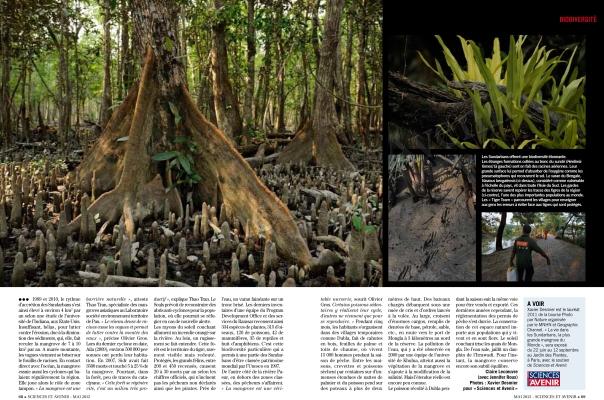 2012_04_SciencesAvenir-Juin12-Mangroves-3net
